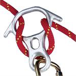 Rescue 8 descender from SR&FS